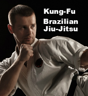 Kung-fu and Brazilian Jiu jitsu